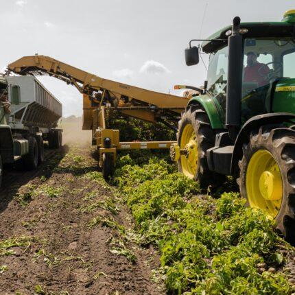Agricoltura lavoro anticovid
