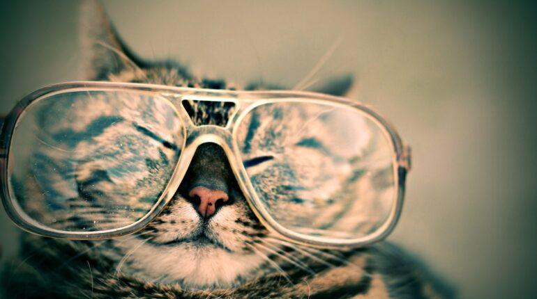 Vedere da vicino e da lontano – Possibile, con un unico paio di occhiali!